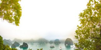 Đảo Ti Tốp Du lịch Hạ Long